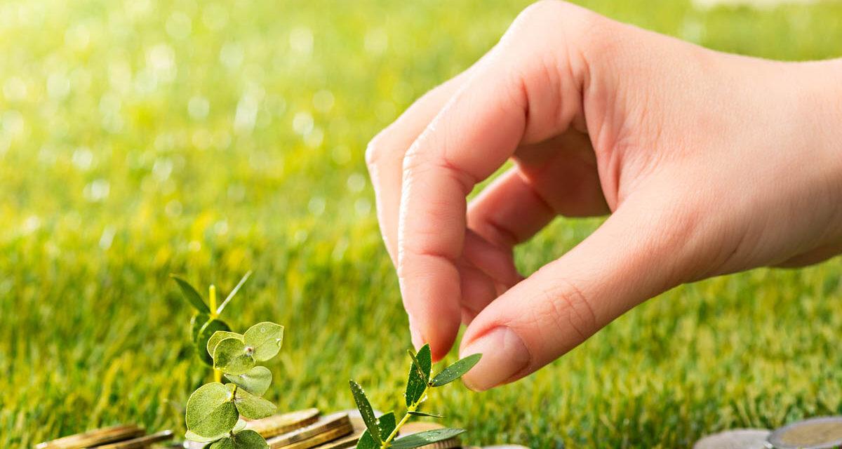 Mehr Klimaschutz  dank nachhaltigen  Investitionen