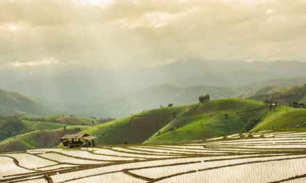 Nachhaltigkeit  bei Schwellenländer- Staatsanleihen
