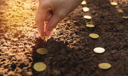 Herausforderungen mit  nachhaltigen Investments