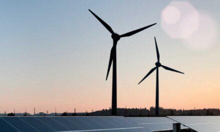 Erneuerbare Energien: Ein nachhaltiges Geschäftsfeld