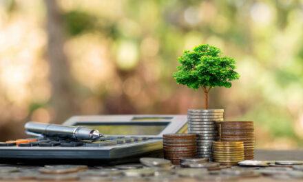 Nachhaltig investieren – wer will das?