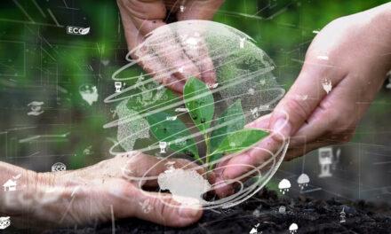 Lassen Sie Ihr Portfolio ergrünen mit mehr Verantwortung durch Green Bonds